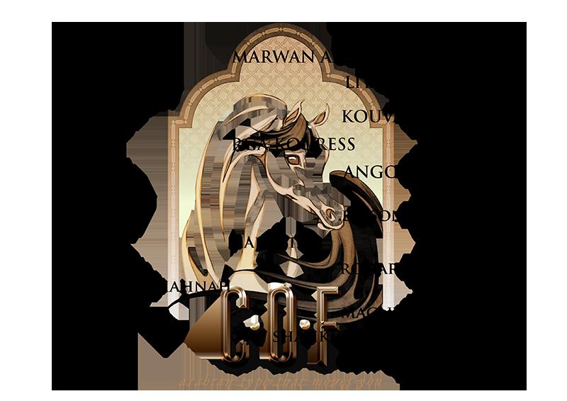 mirajj_pedigree_800x566